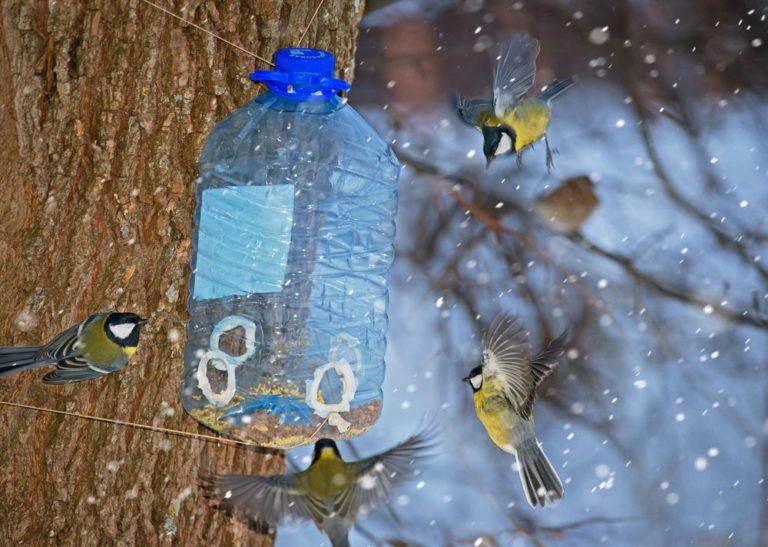 PET palack újrahasznosítás