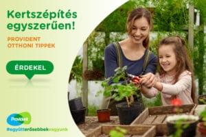Ismerd meg a fűszernövényeket, dobd fel az ételeid!