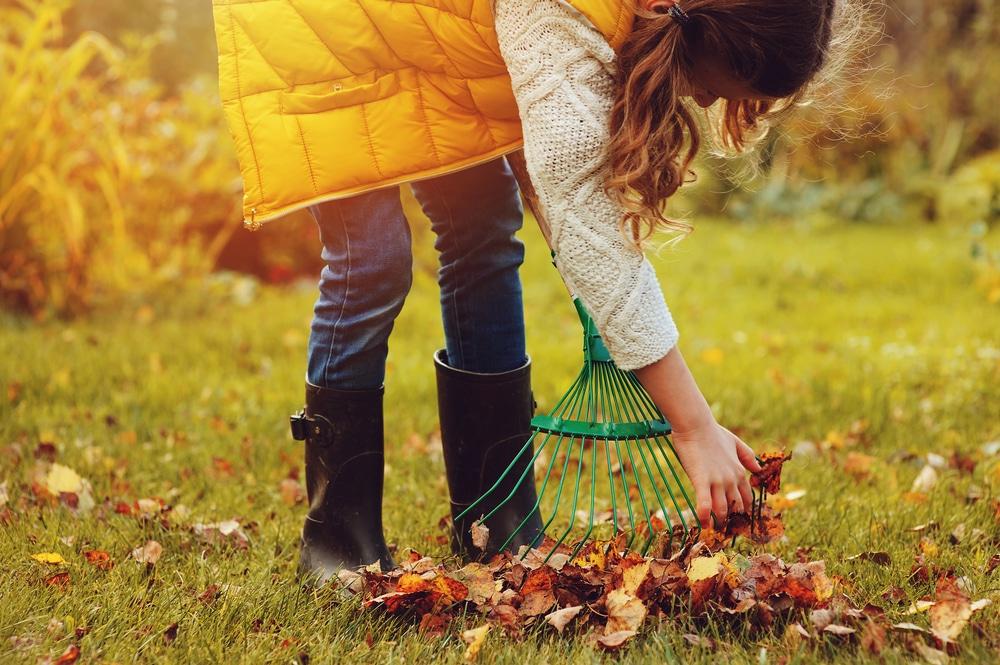 őszi munkák a kertben