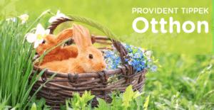 Húsvét és a felelős állattartás