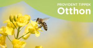 Védd a méheket!